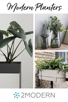Our selection of modern planters encompasses a range of inspiring designs from respected brands, like Ferm Living, Vondom, and Loll Designs—and includes an eclectic collection of vessels for your favorite flowers and greenery.