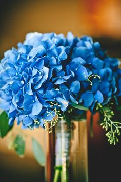 Bright blue hydrangeas. Always reminds me of my grandmother. She had bushes of these in front of her house. I carried them in my wedding bouquet in memory of her.
