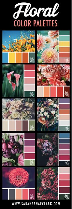 Explore the colors of nature with these 25 color palettes inspired by flowers, bouquets and gardens. Floral color inspiration for wedding color palettes or flower arrangements and more. Spring Color Palette, Colour Pallette, Colour Schemes, Color Combos, Beach Color, Aesthetic Colors, Colour Board, Colorful Garden, Color Theory
