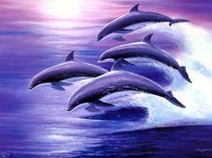 ★Ocean Travelers★ - Dolphins Wallpaper ID 1824862 - Desktop Nexus Animals
