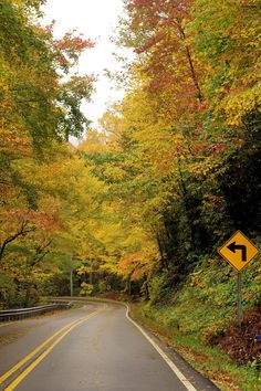 Fall colors along the Blue Ridge Parkway in North Carolina near Asheville - spectacular scenic drive.