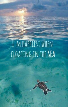 I'm happiest when floating in the sea.