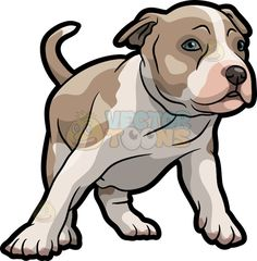 A Playful American Staffordshire Terrier Puppy Cute Animal Drawings, Animal Sketches, Cute Drawings, Pitbull Drawing, Puppy Drawing, American Staffordshire Terrier Puppies, Pitbull Wallpaper, American Bully, Bulldog Mascot