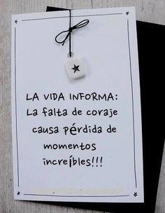 La vida informa: la falta de coraje causa pérdida de momentos increíbles!!! - AnsinaEs.com