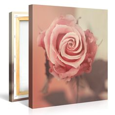 Amazing wall decor - your photo on canvas. www.canvasonsale.com  #canvas #canvasonsale #canvas