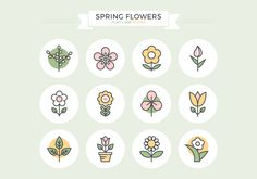Spring Flowers Flat Line Icons Vector Graphic — catkins, outline, blossom, colored, yellow, nature, simple, stroke, garden, flower, branch, floral, filled, symbol, color, plant, tulip, bloom, icon, leaf, pink