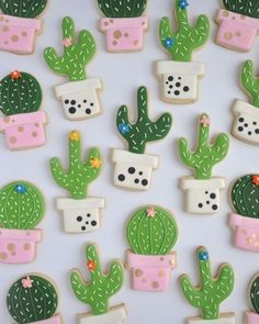 The prettiest cacti cookies ever! by Johanie Les Biscuits. Perfect cactus cookies for a fiesta birthday party! Galletas Cookies, Iced Cookies, Cute Cookies, Royal Icing Cookies, Cupcake Cookies, Sugar Cookies, Cookie Favors, Baking Cookies, Biscuit Cookies
