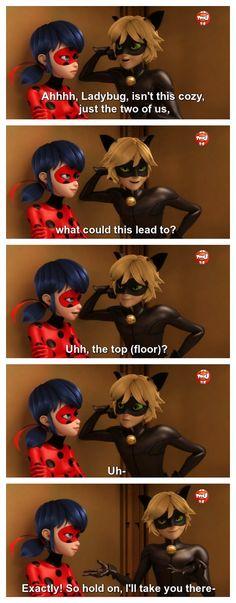 Keep tryin' kitten. (Miraculous Ladybug, Chat Noir flirting)