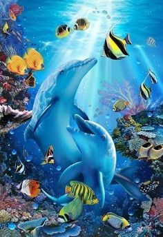 Underwater Wallpaper, Underwater Art, Ocean Wallpaper, Dolphin Painting, Dolphin Art, Ocean Theme Tattoos, Sea Murals, Dolphin Images, Beautiful Sea Creatures