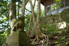 Guardian lion-dog at Shinto shrine