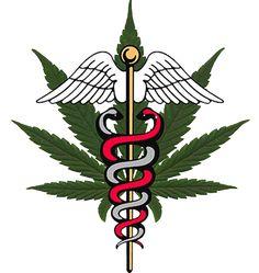  Farmacannabis   Es un sitio web dedicado a suministrar material didáctico-informativo que contrasta diferentes enfoques y opiniones sobre el uso de la marihuana.