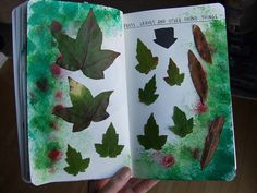 trace different leaves and color on these pages