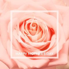 🌺Happy Mother's Day🌺 To all the mother's out there ~ thank you ♥️ You have carried the life force energy within you to perpetuation the betterment of our world 🦋 ... our Mother's Day sale may have subsided however you can still save 25% on all 2019 Lotus Wraps today. Much love & light ♥️ Happy Mother S Day, Our World, Love And Light, Lotus, Wraps, Rose, Flowers, Lotus Flower, Floral