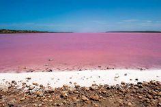 Laguna rosa ♡