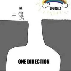 become a directioner, and this happens...