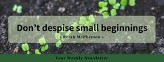 Don't despise small beginnings