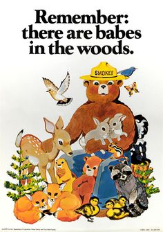 U. S. Forest Service Graphics · Smokey Bear · Special Collections ...
