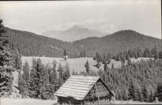 Pohľad na Kriváň z Páleníc - fotoarchiv:Belomír Račko - 1967 Shepherds Hut, Old Photographs, Farms, Cabin, Mountains, Nature, Folklore, Homesteads, Naturaleza