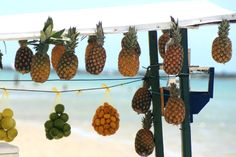 #travelcolorfully while in brazil don't forget to try the tropical fruits!