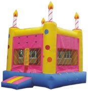 Birthday Cake 15x15 Bouncer
