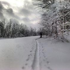 Sci alpinismo in Appennino. Ospitaletto, Ligonchio RE - Instagram by giakka71