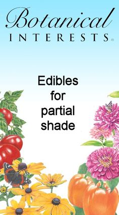 Grow vegetables in partial shade! Learn how!