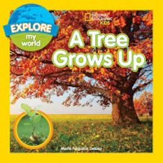 A Tree Grows Up comp