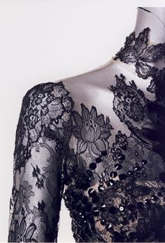 Intricate Lace Sleeve