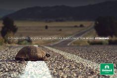 Jamais desistir! Pequenos obstáculos fazem parte da nossa rotina e a forma como lidamos com eles é o que faz toda a diferença. Pense sempre positivo: http://unimed.me/10008v