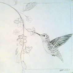 New Humming Bird Sketch Hummingbird Drawing A Tattoo Ideas Hummingbird Sketch, Watercolor Hummingbird, Watercolor Bird, Hummingbird Quotes, Bird Drawings, Drawing Sketches, Pencil Drawings, Sketch Art, Sketching