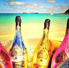 What else than a bottle with a young & rich friend! Gold Bottles, Champagne Bottles, Armand De Brignac, Wine Wallpaper, Champagne Brands, Young And Rich, Dom Perignon, Rainbow Food, Moet Chandon