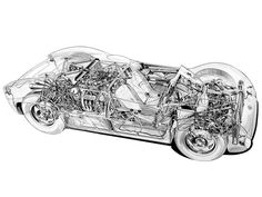 1961 Maserati Tipo 63 Birdcage - Illustrator unknown