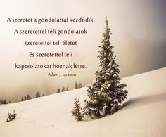 Well Said Quotes, Jackson, Words, Holiday Decor, Hungary, Outdoor, Life, Inspiration, Running