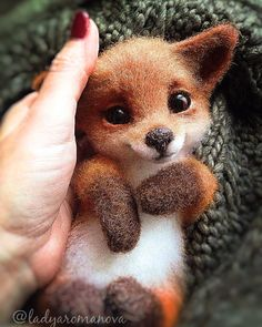 How cute is this needle felted fox? Looks so real and adorable! Could easily be altered to be a dog or cat. Love it! How cute is this needle felted fox? Looks so real and adorable! Could easily be altered to be a dog or cat. Love it! Baby Animals Super Cute, Cute Little Animals, Cute Funny Animals, Cute Cats, Baby Animals Pictures, Cute Animal Photos, Cute Animal Drawings, Felt Animals, Animals And Pets