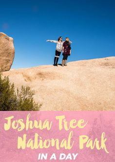 Visit Joshua Tree National Park in a day!