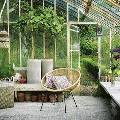 ¿Qué plantar en otoño? - Contenido seleccionado con la ayuda de http://r4s.to/r4s