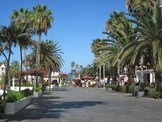 Avenida Colón / #LagoMartiánez #puertodelacruz