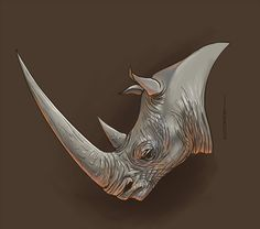 un ptit rhino en speed