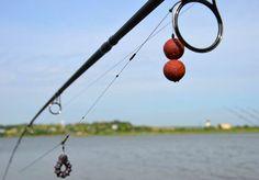 montura-combi ptr agatatura Carp Fishing, Fishing Tips, Sea Angling, Fishing Quotes, Fresh Water, Outdoor Decor, Fishing, Saltwater Fishing, Soda
