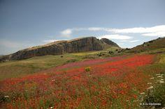 Salvatore Clemente: Fotografie: Panorami siciliani