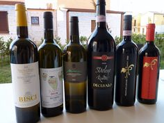 Verdicchio - Pecorino - Rosso Conero - just some of the excellent local wines