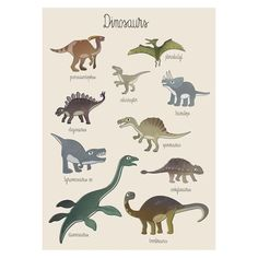 New dinosaur poster from Sebra is the perfect edition for your toddlers room. Interesting and educational - they'll soon know their Tyrannosaurus Rex from their Brontosaurus? Dinosaur Posters, Tube Carton, Poster Boys, Luxury Wallpaper, Hanging Frames, Wall Fans, Teen Room Decor, Room Posters, Animales