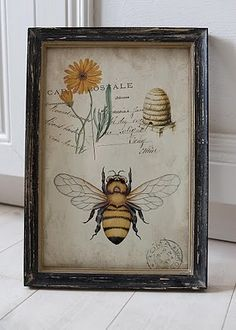 ≗ The Bee's Reverie ≗ Antique Bee Print I Love Bees, Birds And The Bees, Vintage Prints, Vintage Frames, Buzz Bee, Decoupage, Stoff Design, Bee Skep, Bee Art