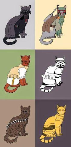 El desván del Freak: Los gatos más galácticos. Elige tu favorito.
