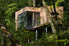Des cabanes dans les arbres en Corrèze