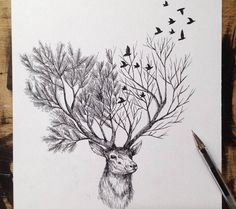 Italian artist Alfred Basha combines animals and natural elements such as trees, branches and leaves to create his beautiful drawings. More illustrations via Ideia Quente drawings Hand Drawn Animal Illustrations by Alfred Basha Animal Drawings, Art Drawings, Pencil Drawings, Animal Illustrations, Drawing Animals, Drawings Of Trees, Tattoo Drawings, Hunting Drawings, Tattoo Illustrations
