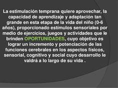 Desarrollo cerebral-0a6-anos