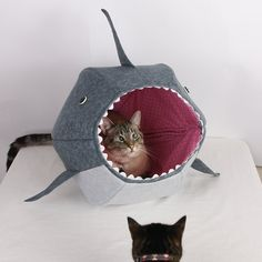 Cat Ball a Unique Cat Bed for Shark Week von TheCatBall auf Etsy