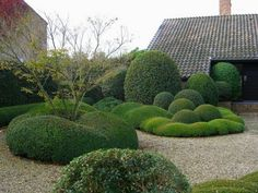 Quick And Easy Landscaping On A Budget - House Garden Landscape Landscaping With Rocks, Modern Landscaping, Backyard Landscaping, Modern Landscape Design, Traditional Landscape, Formal Gardens, Outdoor Gardens, Alnwick Castle, Topiary Garden