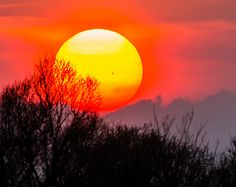 4-16-16, Sunspot AR2529 is so big, people are noticing it in the sunset. Rayann Elzein saw it Thursday evening in Nijmegen, The Netherlands.  http://www.spaceweather.com/